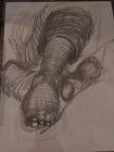 Feet sketch